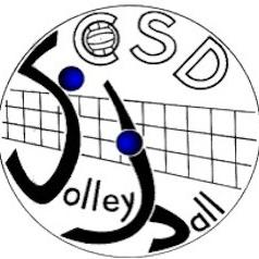 Club Sportif Décines Volley-ball