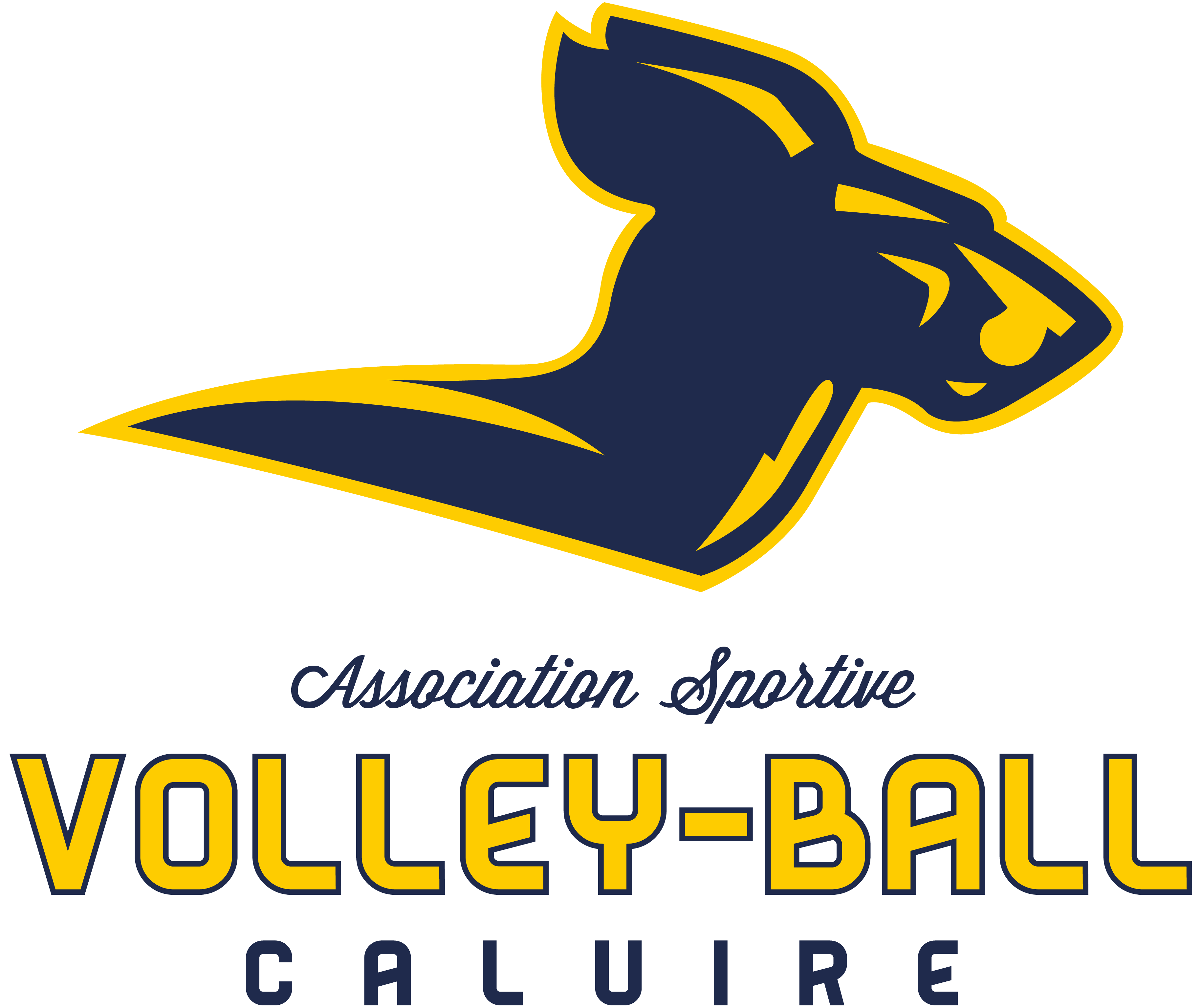 Logo AS Caluire Volley Ball